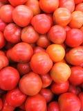 Het rood rijpt tomaten plantaardig beeld royalty-vrije stock foto