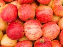 Het rood van appelen Stock Afbeelding