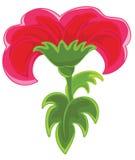 Het rood van de bloem Royalty-vrije Stock Foto's