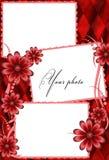 Het rood van het frame met bloemen Stock Foto