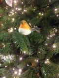 Het roodborstjedecoratie van Robin op een Kerstmisboom met twinkly lichten stock foto's