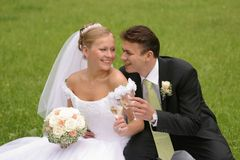 Het Roosteren van de bruid en van de Bruidegom   Stock Foto