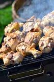 Het roosteren van kip in net Stock Fotografie