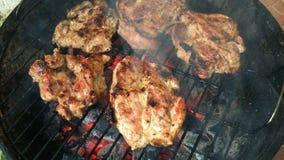 Het roosteren van tijd Rundvlees of varkensvleeslapjes vlees op de grill met vlammen over de steenkolen stock video