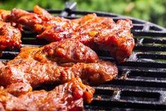 Het roosteren van varkensvleeslapjes vlees bij de barbecuegrill Royalty-vrije Stock Foto's