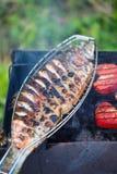 Het roosteren van vissen en tomaten op kampvuur Stock Afbeeldingen