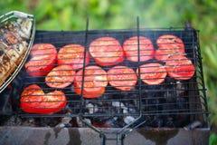 Het roosteren van vissen en tomaten op kampvuur Stock Afbeelding
