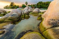 Het rots op zee strand Stock Foto