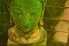 Het rotte oude hoofd van Boedha werd verlaten in openlucht en had mos royalty-vrije stock afbeeldingen