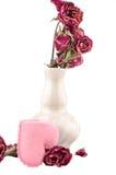 het roze hart met droog nam toe Royalty-vrije Stock Foto's