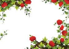 Het roze kader - grens - malplaatje - met rozen - valentijnskaarten - sprookjes - illustratie voor de kinderen Stock Fotografie