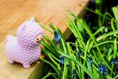 Het roze kleine lama squishy stuk speelgoed op houten raad met blauwe bloeiende de druivenhyacint van muscariarmeniacum bloeit en royalty-vrije stock afbeelding