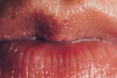 Het roze mollige natuurlijke vrouwelijke close-up van de lippenfonkeling Zonder make-up gezichts en lippenzorg royalty-vrije stock afbeeldingen