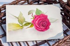 Het roze rozewater schilderen in een mand Royalty-vrije Stock Afbeeldingen