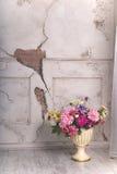 Het roze van de vloervaas bloeit muur Stock Afbeeldingen