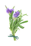 Het Ruikertje van de Bloem van het Kruid van de lavendel royalty-vrije stock afbeelding