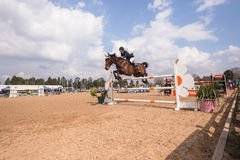 Het ruiterpaard toont Actie het Springen Stock Foto