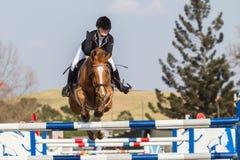 Het ruiterpaardmeisje Springen Stock Foto