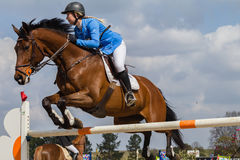 Het ruiterpaardmeisje Springen Royalty-vrije Stock Foto