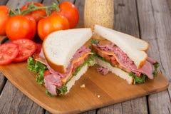 Het Rundvlees van het braadstuk en de Sandwich van de Kaas Royalty-vrije Stock Fotografie