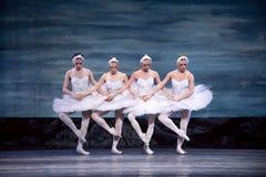 Het Russische koninklijke Meer van de ballet perfome Zwaan Stock Afbeelding