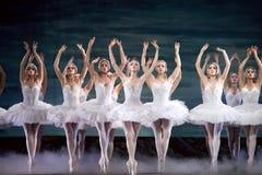 Het Russische koninklijke Meer van het Meer van de ballet perfome Zwaan Stock Afbeeldingen