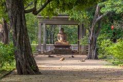 Het Samadhi-Standbeeld is een standbeeld bij Mahamevnawa-Park in Anuradhapura, Sri Lanka wordt gesitueerd dat stock foto