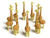 Het samenkomen van giraffen Stock Afbeeldingen