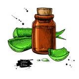 Het sap van aloëvera in fles Hand getrokken vectorillustratie isola royalty-vrije illustratie
