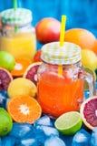 Het sap van de citrusvruchtenvitamine met verse rond vruchten Stock Foto's