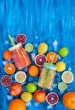 Het sap van de citrusvruchtenvitamine met verse rond vruchten Royalty-vrije Stock Afbeelding