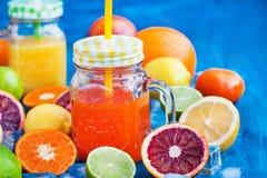 Het sap van de citrusvruchtenvitamine met verse rond vruchten Royalty-vrije Stock Foto