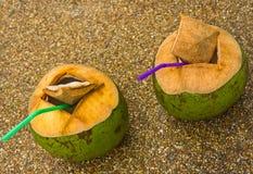 Het sap van de kokosnoot. Royalty-vrije Stock Foto