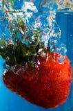 Het sappige Fruit van de Aardbei in Wate Stock Afbeeldingen