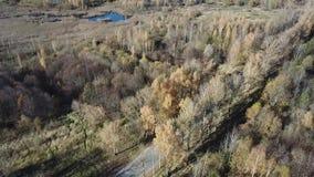 Het satellietbeeld van het de herfstlandschap stock footage