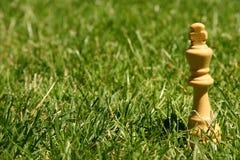 Het schaakstuk van de koning op gras Stock Foto
