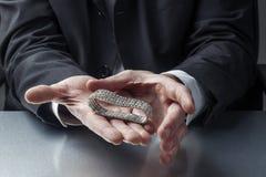 Het schatten juwelen voor zaken Stock Afbeelding