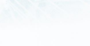Het Scherm van de punt Stock Afbeeldingen