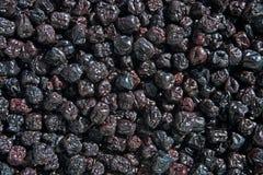 Het schermhoogtepunt van droge chokeberryaronia stock foto