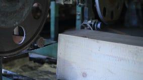 Het scherpe logboek van de lintzaagzaagmolen in afmetingstimmerhout stock videobeelden
