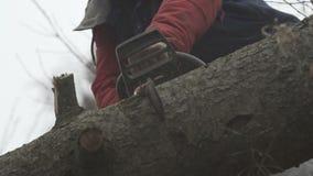 Het scherpe logboek van het kettingzaagblad van hout stock footage