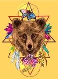 Het schetsen van beer Stock Afbeeldingen