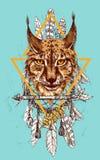 Het schetsen van lynx Royalty-vrije Stock Afbeeldingen
