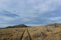 Het Schiereiland van landschapsbanken, Nieuw Zeeland Stock Afbeelding