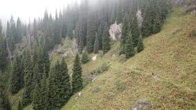 Het schieten met de hommel Het vliegen over het bos in de mist De mensen lopen langs de weg Stijging in de bergen stock videobeelden