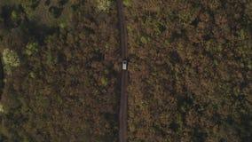 Het schieten van de auto die van de luchttoerist op toeristenroute door bos reizen stock videobeelden