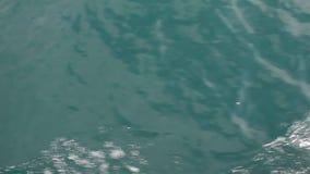 Het schieten van de oppervlakte van het water van een bewegende boot stock footage