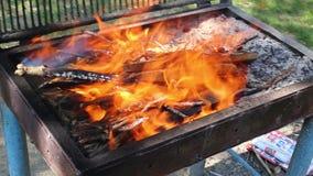 Het schikken van Barbecuebrand stock videobeelden
