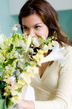 Het Schikken van de bloem Stock Afbeelding