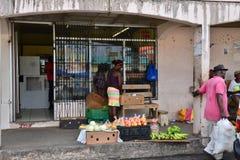 Het schilderachtige Eiland Heilige Lucia in de Antillen Stock Foto